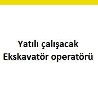 ekskavatör operatörü arayanlarTerimi kaldır: ekskavatör operatörü eleman ilanları ekskavatör operatörü eleman ilanları