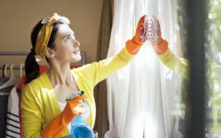 Ev İşlerine Yardımcı Bayan