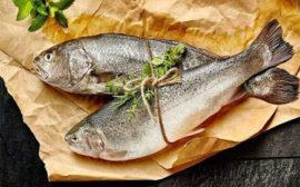 Balık Ayıklama Ustası / Kadıköy